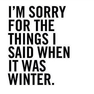 Im sorry for the things I said when it was winter